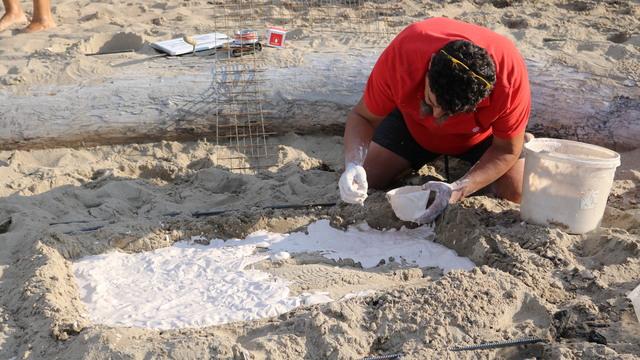 Итальянский художник создал скульптуру на пляже в Отрадном (фото)