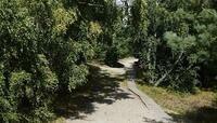 Объявлен сбор добровольцев на поиски пропавших в лесу калининградки с двумя внуками