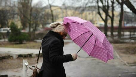 В Калининградской области к вечеру воскресенья ожидается усиление ветра