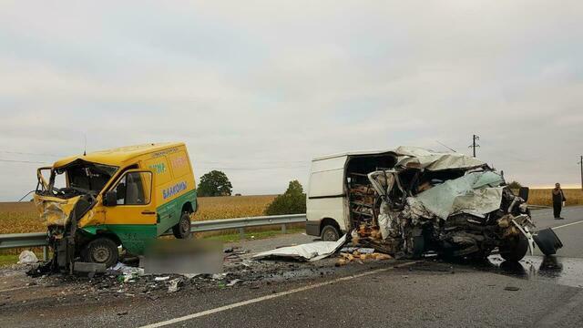 На трассе Калининград — Нестеров столкнулись два микроавтобуса, водители погибли (фото, видео)