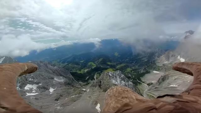 Экологи запустили орла с камерой, чтобы показать тающие ледники в Альпах (видео)