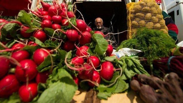 В Калининградской области за 11 лет удвоилось производство сельхозпродукции