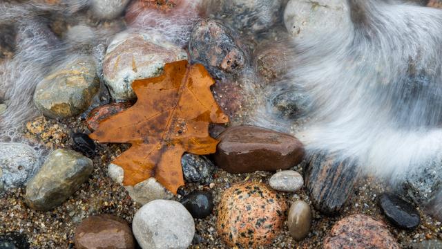 Индейцы, грибы и пляж: чем привлекает туристов осенний Светлогорск (фоторепортаж)