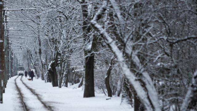 Синоптики прогнозируют февральские морозы на северо-западе России