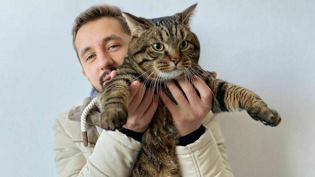 Хозяин толстого кота попросил