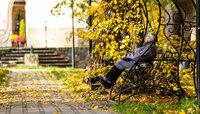 Калининградский климатолог рассказал, почему в регионе нетипично тёпло в ноябре