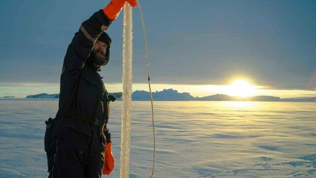 В Калининграде открывается мультимедийная выставка про Антарктиду