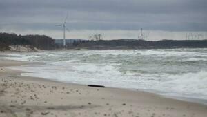 СК устанавливает личность мужчины, скелет которого нашли на берегу моря в Куликово (фото)