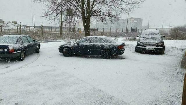 В Калининградской области во вторник выпал снег (фото, видео)