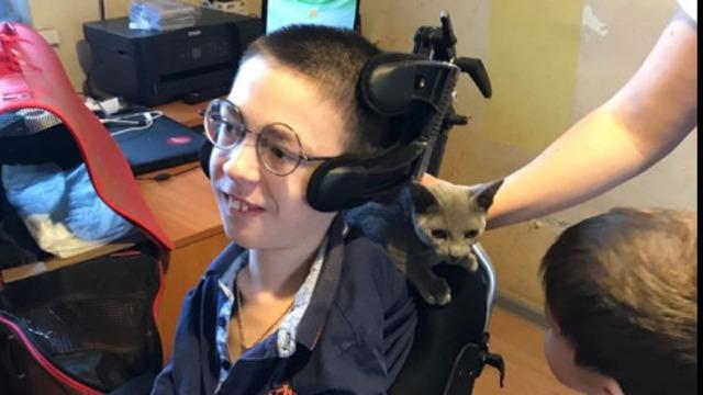 Калининградцы исполнили мечту 13-летнего подростка с мышечной атрофией о котёнке породы русская голубая