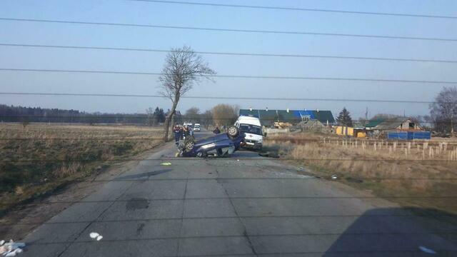 Очевидцы: на дороге под Светлогорском перевернулась легковушка (фото)