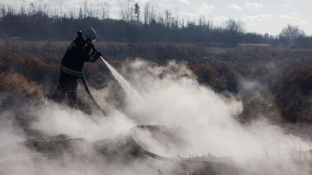 Калининградские пожарные за сутки потушили почти 30 палов травы