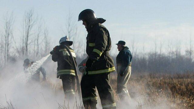 В Калининградской области пожарные 44 раза за сутки выезжали на палы травы