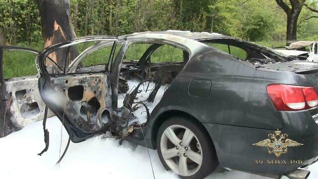 Водитель Lexus бросился в лес: стали известны подробности аварии с двумя погибшими на балтийской трассе (фото, видео)