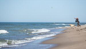 В Калининградской области не будут закрывать приморские города на выходные
