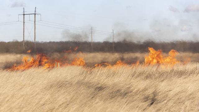 В Польше создали огнетушитель, который гасит пламя с помощью звука
