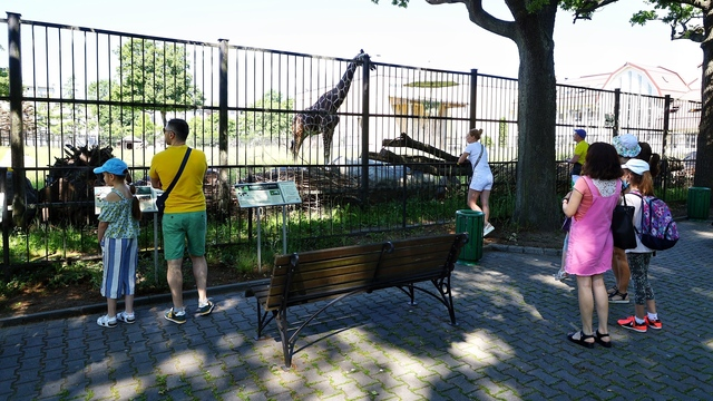 В зоопарке Калининграда назвали число посетителей в первый день работы после карантина