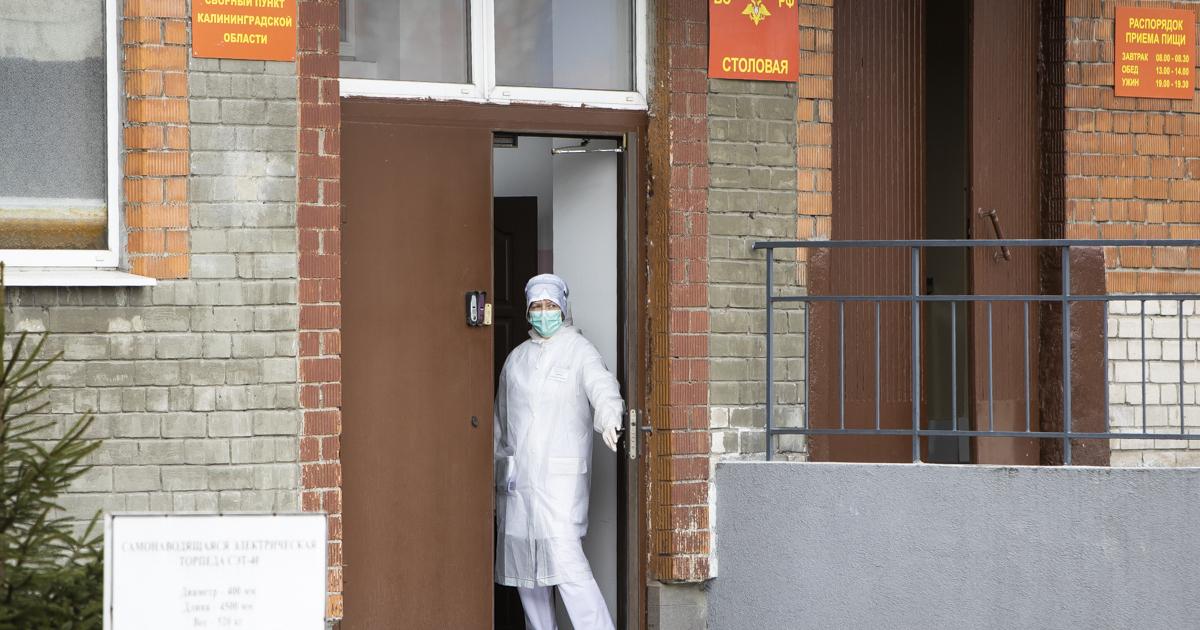 В каких муниципалитетах региона выявили новые случаи COVID-19 (список) - КЛОПС - главный новостной сайт Калининграда