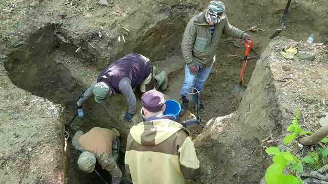 Под Зеленоградском среди обломков бомбардировщика нашли останки советского лётчика (фото)