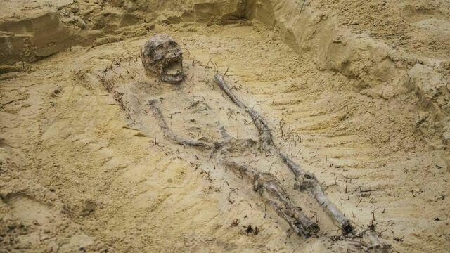 В Польше в захоронении XVI века нашли останки более 100 детей с монетами во рту (фото)