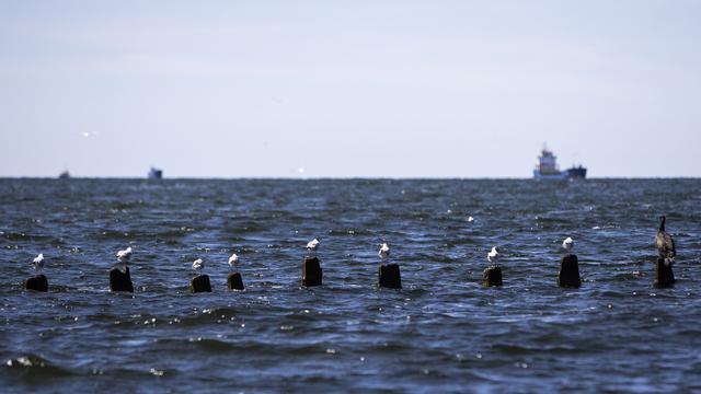 Учёные оценят последствия строительства Польшей канала через Балтийскую косу