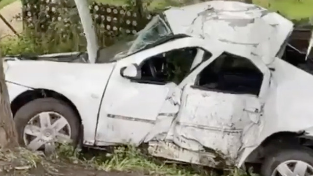 В Полесском районе такси врезалось в дерево, водитель погиб