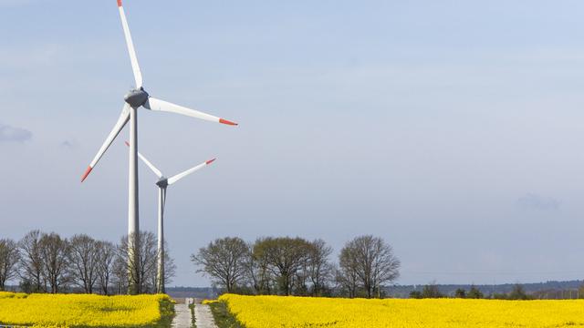В начале недели в Калининграде порывы ветра усилятся до 16 метров в секунду