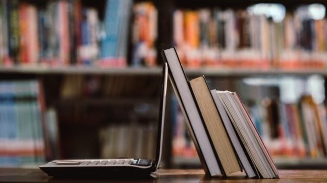 Выставки и форумы: какие мероприятия проходят в калининградских библиотеках