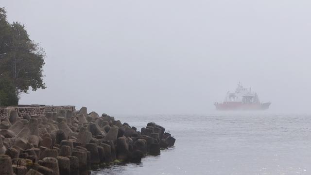 Погибает планктон, рачки и рыба: учёный БФУ — о том, чем опасен разлив нефтепродуктов