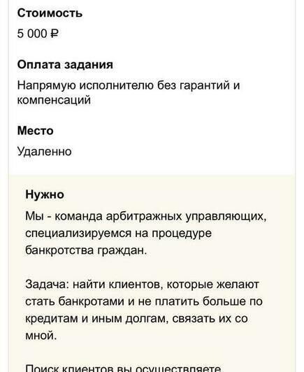 Будущий банкрот, зэк и искатель мини-юбок: кто нужен калининградцам на «Авито» и Youdo - Новости Калининграда   Скриншоты сайта Youdo