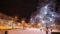 Синоптики не прогнозируют существенных осадков в Калининградской области в воскресенье