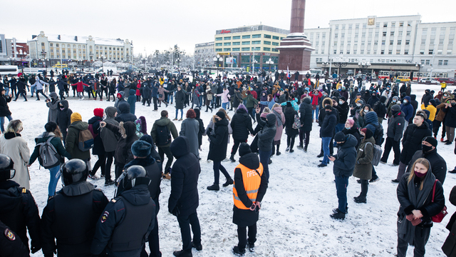 Британцы прокомментировали в Сети российские акции в поддержку Навального