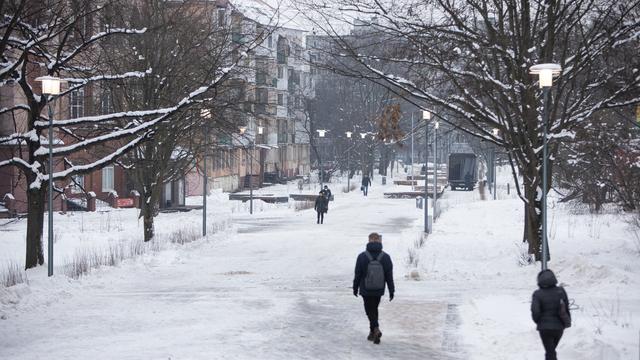 Фото дня: сквер на Соммера — Рокоссовского после реконструкции