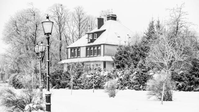 Кругом бело: про зиму в ч/б фотографиях