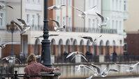 Своп-вечеринка, трибьют-концерт Шаде и автоквест: как в Калининграде провести длинные выходные