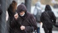 В Калининградской области ночью ожидаются порывы ветра до 19 метров в секунду
