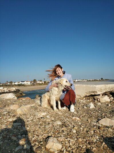 Бродячая собака, которая живёт в нашем посёлке   Фото: личный архив
