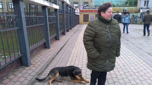 Хозяйка овощной палатки и сторож-пенсионерка не позволили отловить собак у Северного вокзала (видео)