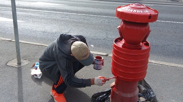 В Калининграде пара возобновила покраску пожарных гидрантов