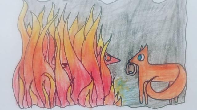 В Калининграде шестиклассница написала книгу о приключениях сказочных животных и нарисовала к ней иллюстрации