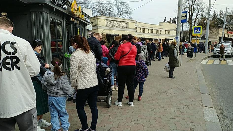 На входе в Калининградский зоопарк собралась очередь из сотни людей (фото, видео) - Новости Калининграда | Фото очевидца