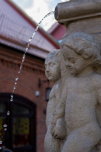 В Музее Мирового океана открыли сезон фонтанов - Новости Калининграда | Фото: Пресс-служба Музея Мирового океана