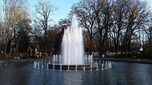 В Калининградском зоопарке 1 мая запустят каскадный фонтан