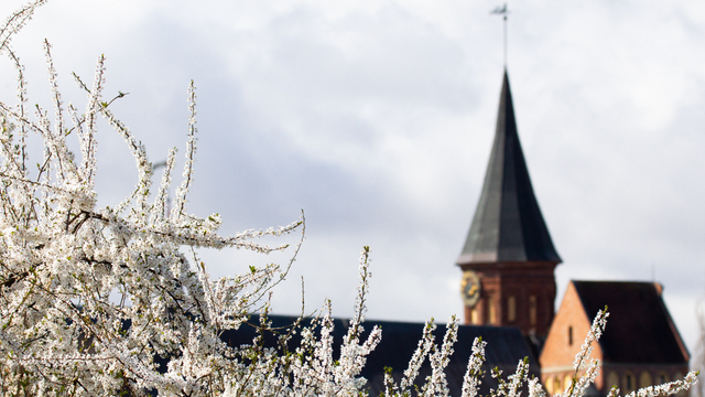 «Край света», «Фиштиваль» и «День с викингами»: 13 идей, как провести первые выходные мая