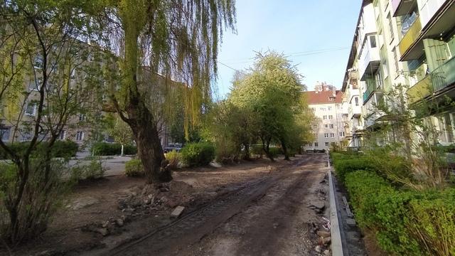 В Калининграде зелёный двор решили закатать в асфальт, жители встали на защиту деревьев