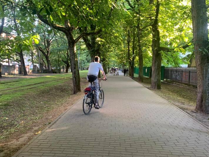 На Фестивальной аллее в Калининграде отделят велодорожку и улучшат освещение - Новости Калининграда   Фото: Елена Дятлова / Facebook