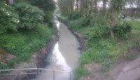 «Сбрасывают канализацию»: в минэкологии нашли причины загрязнения реки Лесной
