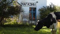 В Калининградской области инфляция оказалась выше общероссийской