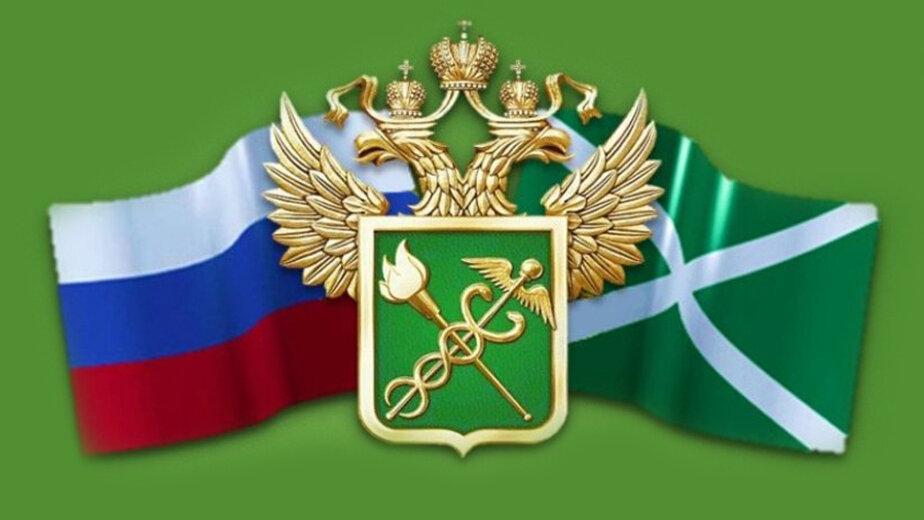 В калининградской школе открывается таможенный класс - Новости Калининграда