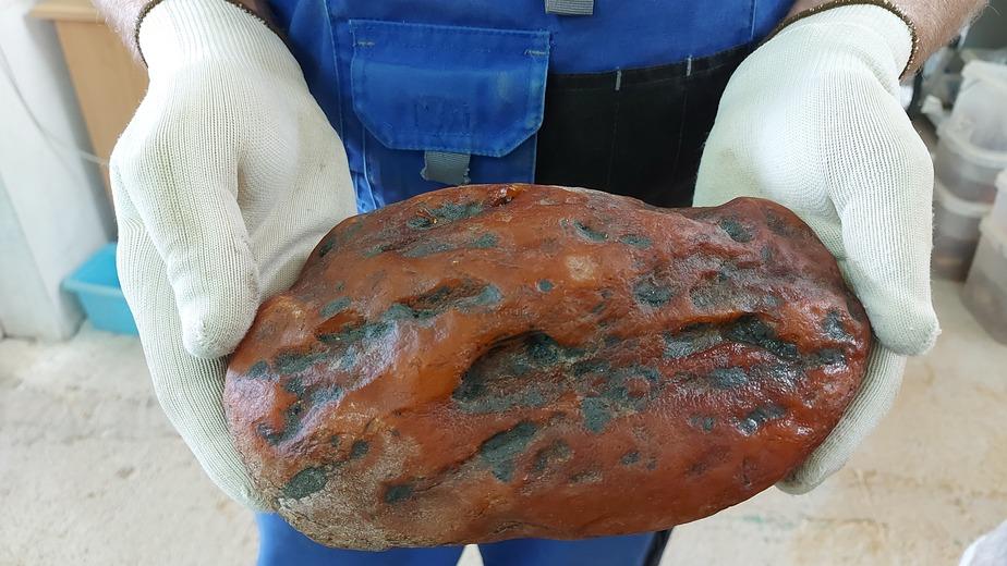 В Калининградской области добыли янтарный самородок весом 1,1 кг, его назвали в честь региона - Новости Калининграда | Фото: Янтарный комбинат
